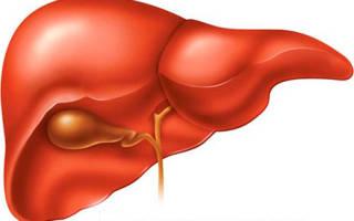 ГГТ в биохимическом анализе крови – что это?