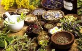 Лекарственные травы, понижающие сахар