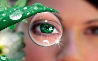 Лекарственные травы для глаз