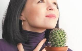 Лекарственные травы от боли в горле