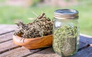 Лекарственные травы для мужского здоровья