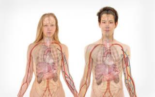 Заболевания почек и мочевого пузыря