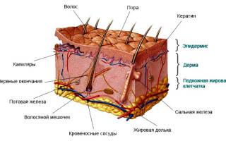 Этапы лечения открытых ран