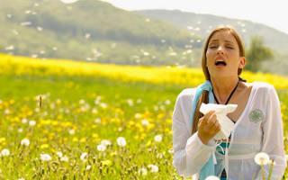 Причины, симптомы и лечение аллергии