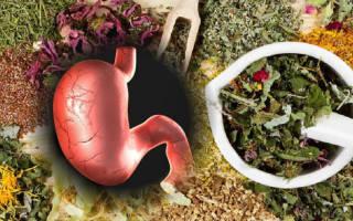 Лекарственные травы для желудка