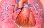 Симптомы и лечение легочной гипертензии