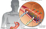 Глюкофаж – инструкция по применению