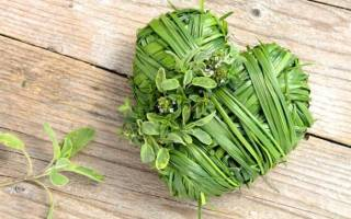 Лекарственные травы для сердца и сосудов