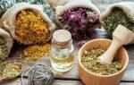 Лекарственные травы снижающие давление