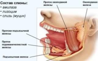 Лечение слюнных желез
