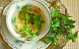 Чем полезен чай с мятой и кому можно его пить?